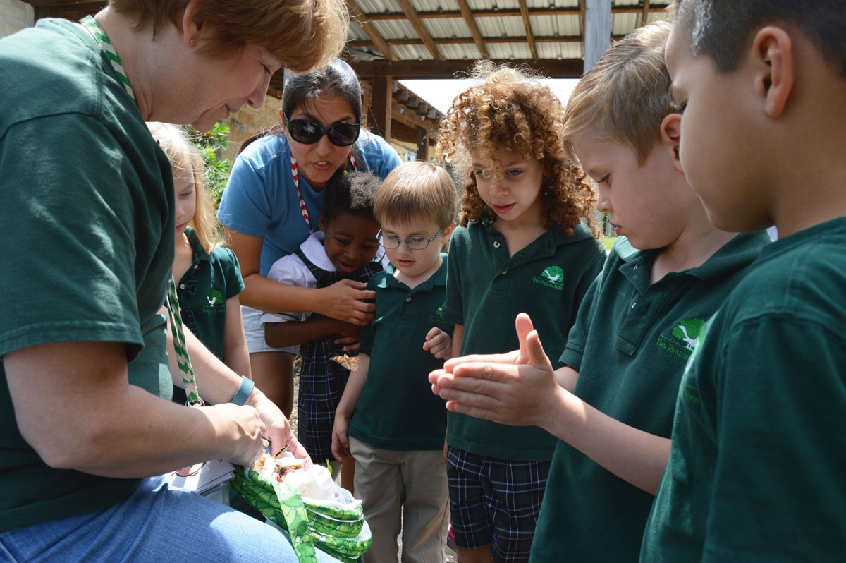 Early Childhood children look at butterflies with their teacher at The Parish School