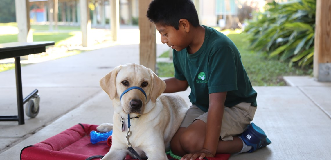 A child sits with assistance dog at The Parish School