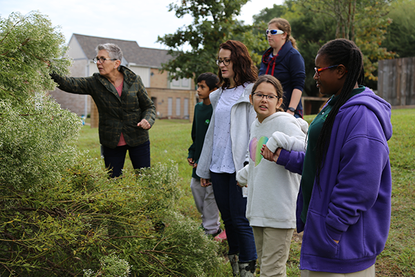 students look at nature on morning walk